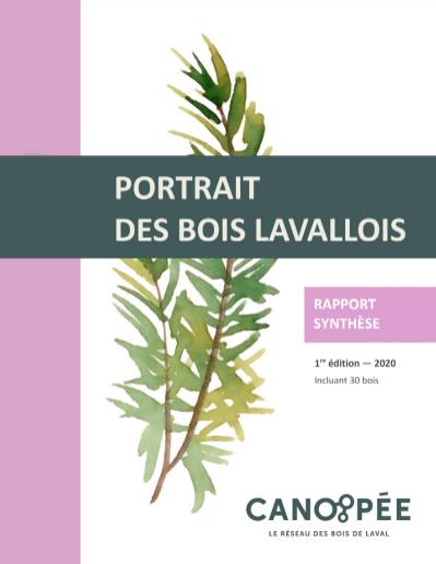 PortraitBois_Synthese
