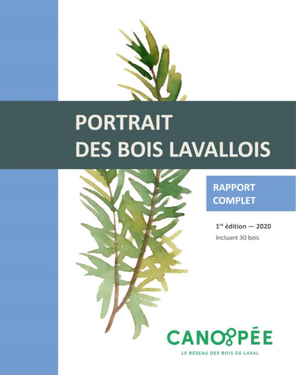 PortraitBois