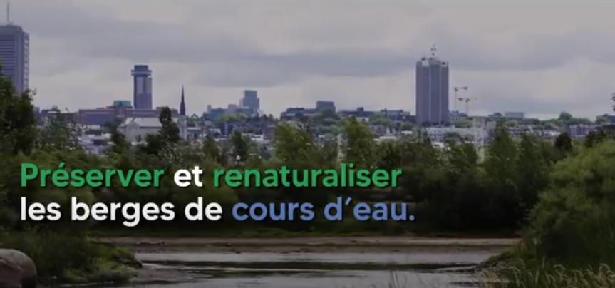 Verdissement_Bienfaits_Video_EauxPluvialesReflectance