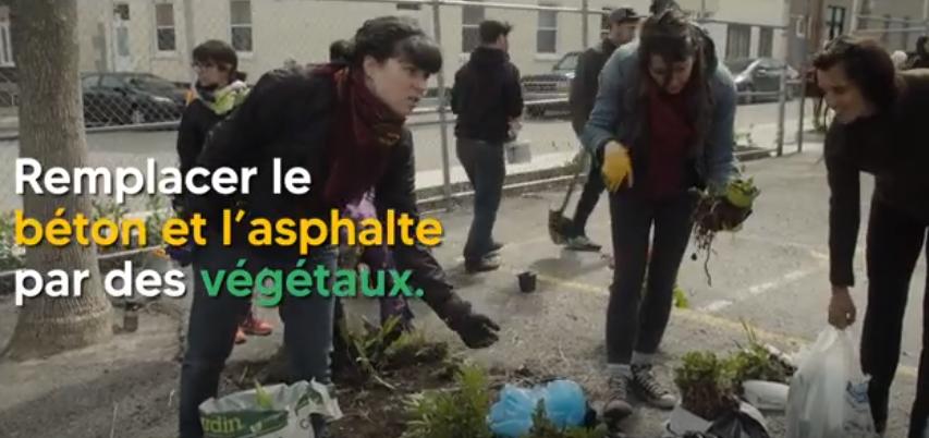 Verdissement_Bienfaits_Video_VerdissementCanopee
