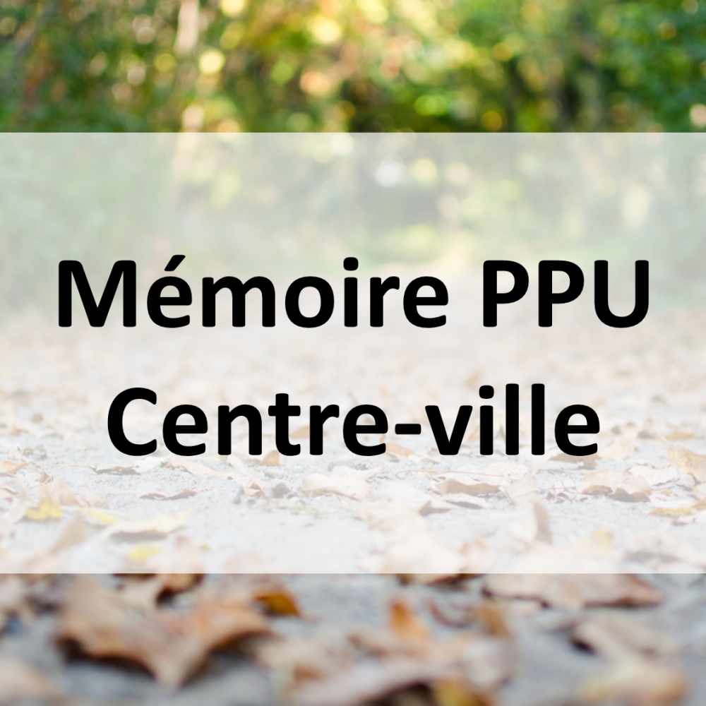 PPU_CentreVille