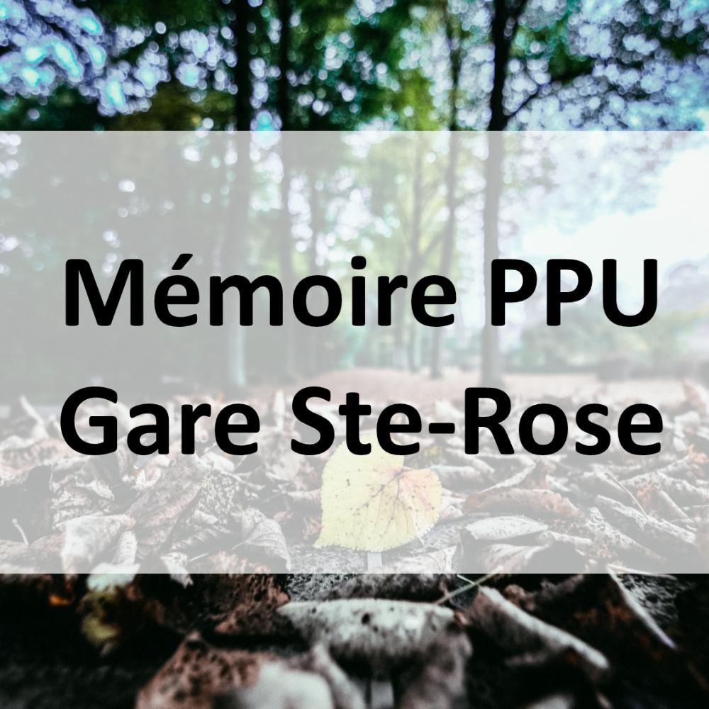 PPU_GareSteRose