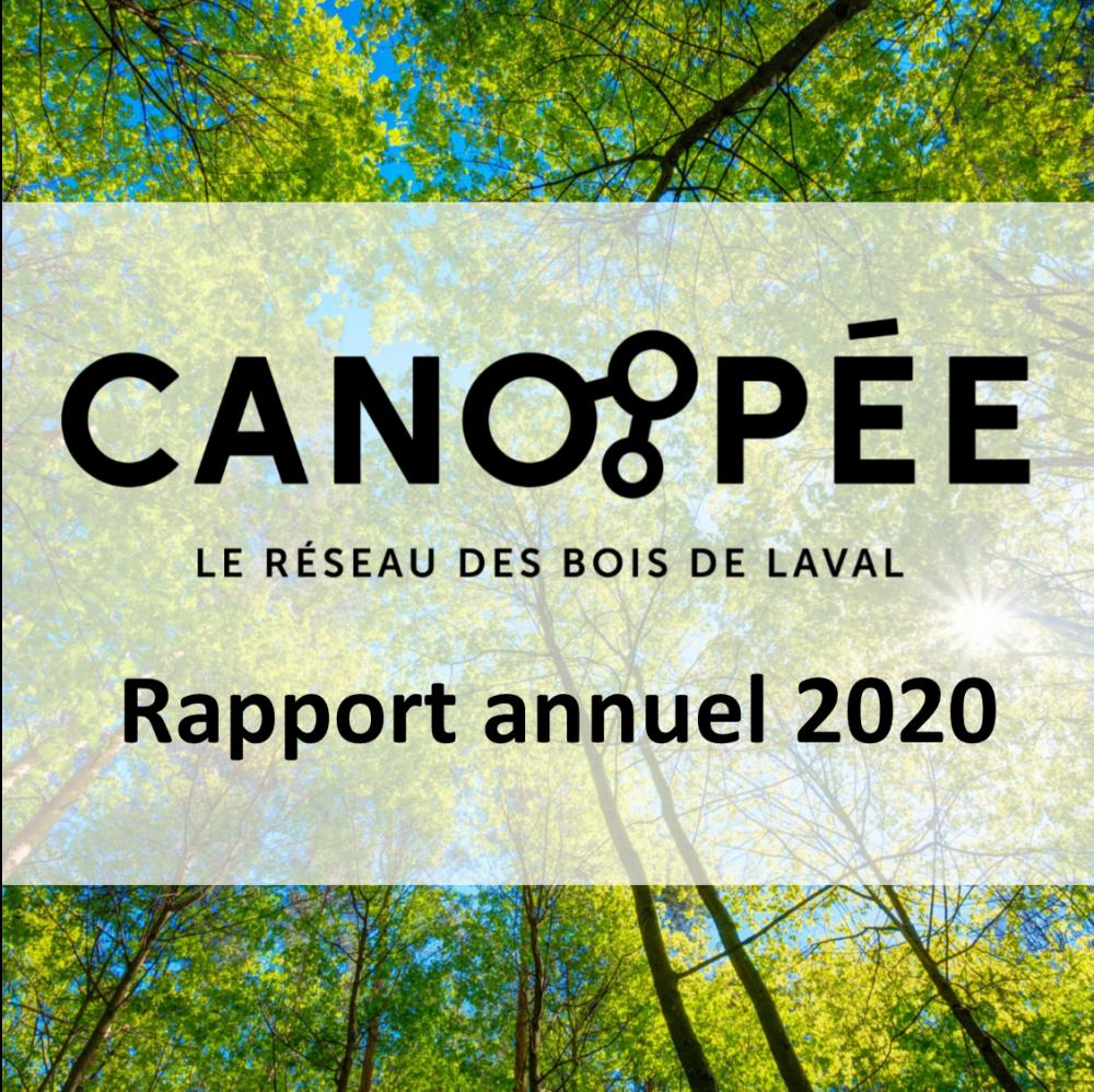 RapportAnnuel2020